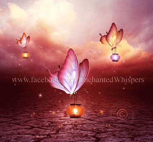 Butterfly Lights by Jessica Allain